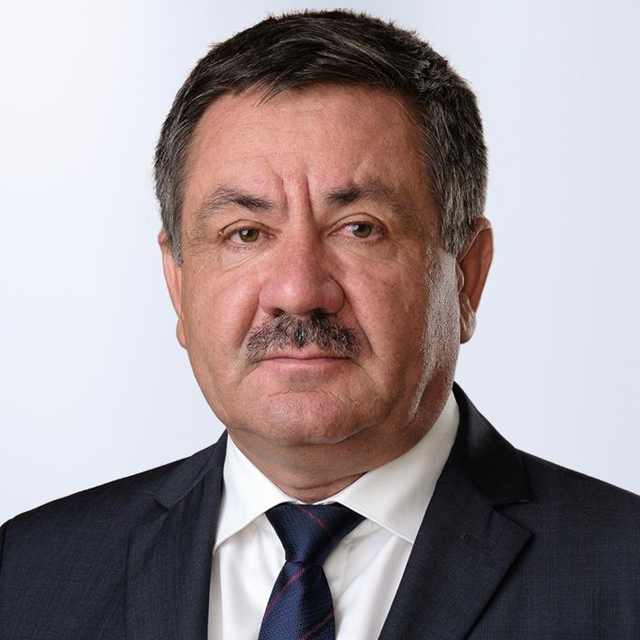 Ionel Oneagă