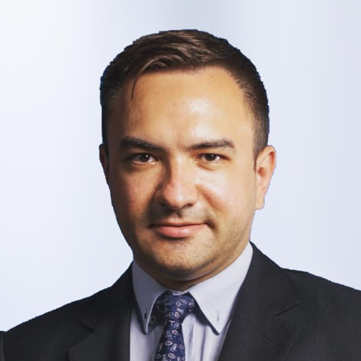 Ungureanu Mihail Emanuel